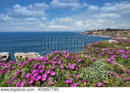 Coast Of The Atlantic Ocean In Cascais And Estoril, Resort Towns In Portugal, Near Lisbon, Europe
