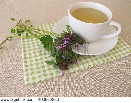 Herbal Tea With Purple Dead Nettle, Lamium Purpureum
