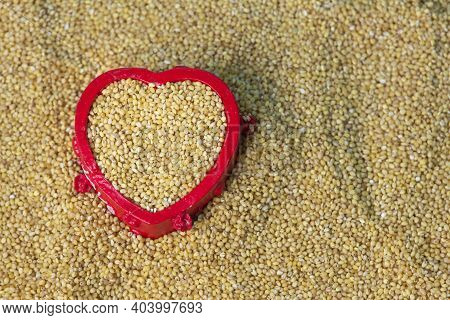 View Of Foxtail Millet (also Known As Italian Millet) Which Is A Healthy Food For Heart. Food Health