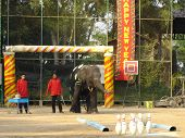 An Amazing Elephant Show in Pattaya Thailand poster