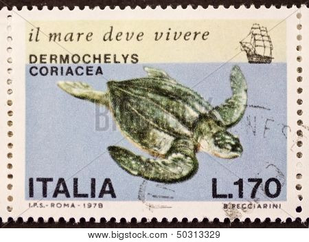 ITALY - CIRCA 1978: a stamp printed in Italy shows image of Leatherback sea turtle (Dermochelys coriacea) the largest living turtle. Italy, circa 1978