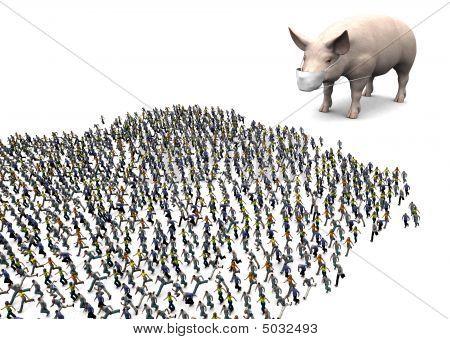 Swine Flu Panic