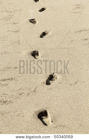 Human Footprints In The Beach