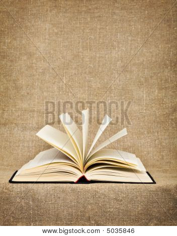 Open Big Book On A Canvas