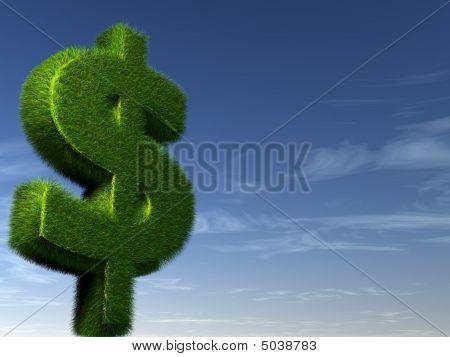 Green Money On Sky