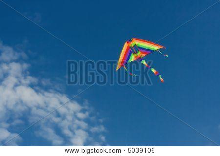 Colourful Kite In Sky