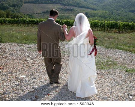 Walking Toward Vineyard 1