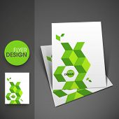 Professional business flyer template, corporate brochure or cover design in green color, can be use for publishing, print and presentation.   poster