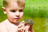 Acquaintance a little boy with a frog poster