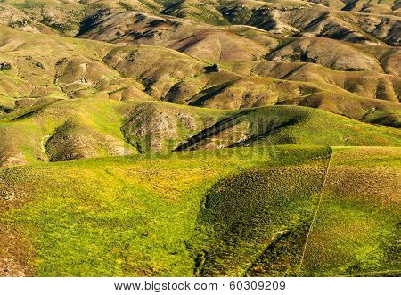 Beautiful green rolling hills of Southern New Zealand at dusk, Lindis Pass, Otago Region poster