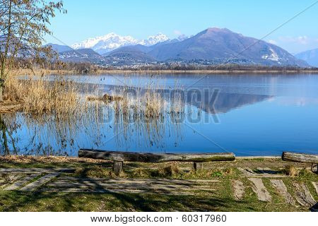 Lake Of Alserio (north Italy)