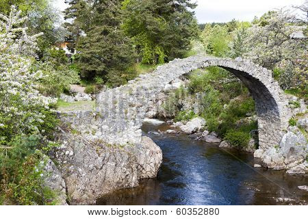Old Packhorse bridge, Carrbridge, Highlands, Scotland