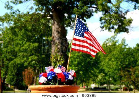 American Patriotism - Flag And Tree