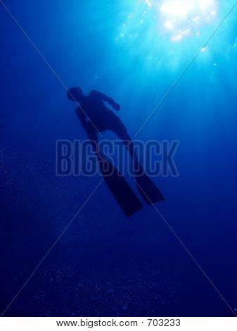 Freediver Silhouette