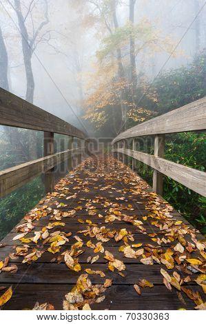 Autumn Scenic Blue Ridge Mountain Bridge