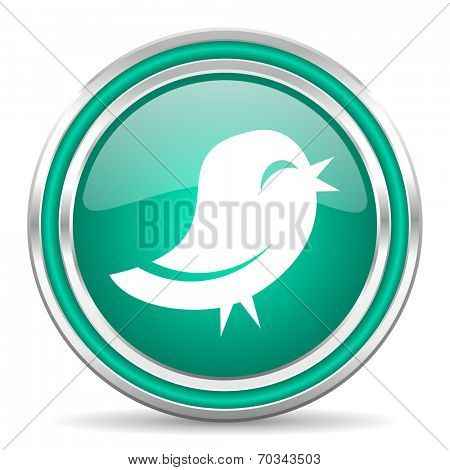 twitter green glossy web icon