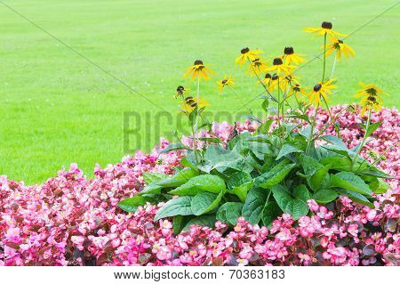 Floral Angle Wallpaper With Pink And Yellow Flowers