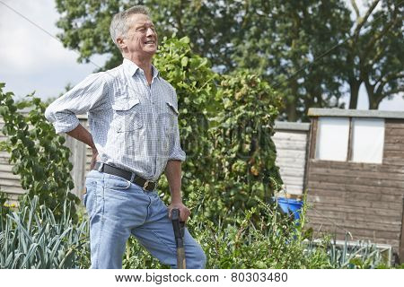 Senior Man Suffering From Back Pain Whilst Gardening