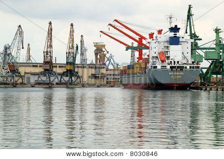 Cargo ship MSC EQUATOR