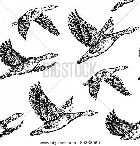 flying geese. Hand drawn illustration vintage pattern
