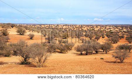 Moroccan Landscape