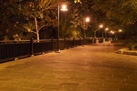 lighting in the park