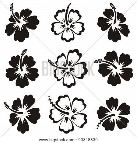 Vector Hibiscus Silhouette Icons