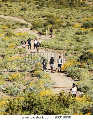 A Trail Into The Superstition Mountain Wilderness