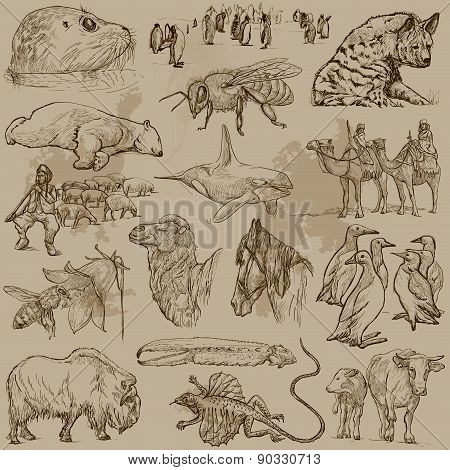 Animals - Hand Drawn Vector Pack