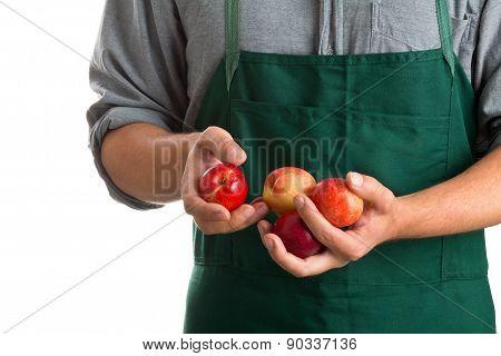 Farmer Holding Fresh Harvested Nectarines