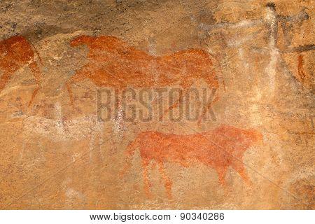 Bushmen (san) rock painting of antelopes, Karoo region, South Africa