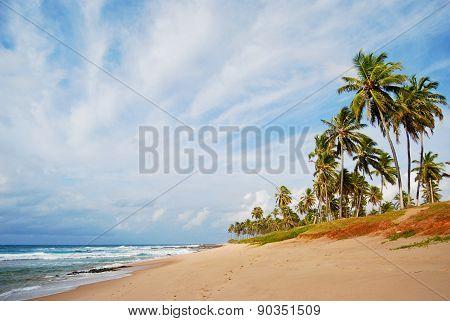 Stella Maris beach in Salvador city, Northeast Brazil. poster
