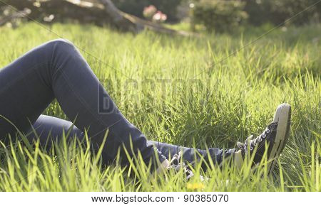 Relaxing In The Park