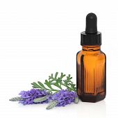 Lavender herb flower leaf sprigs with an aromatherapy essential oil dropper bottle over white background. poster