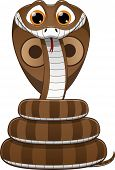 vector illustration, Cute baby cobra, on a white background poster