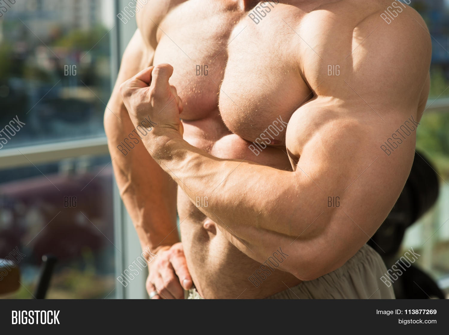 Muscular Torso Arms Image Photo Free Trial Bigstock