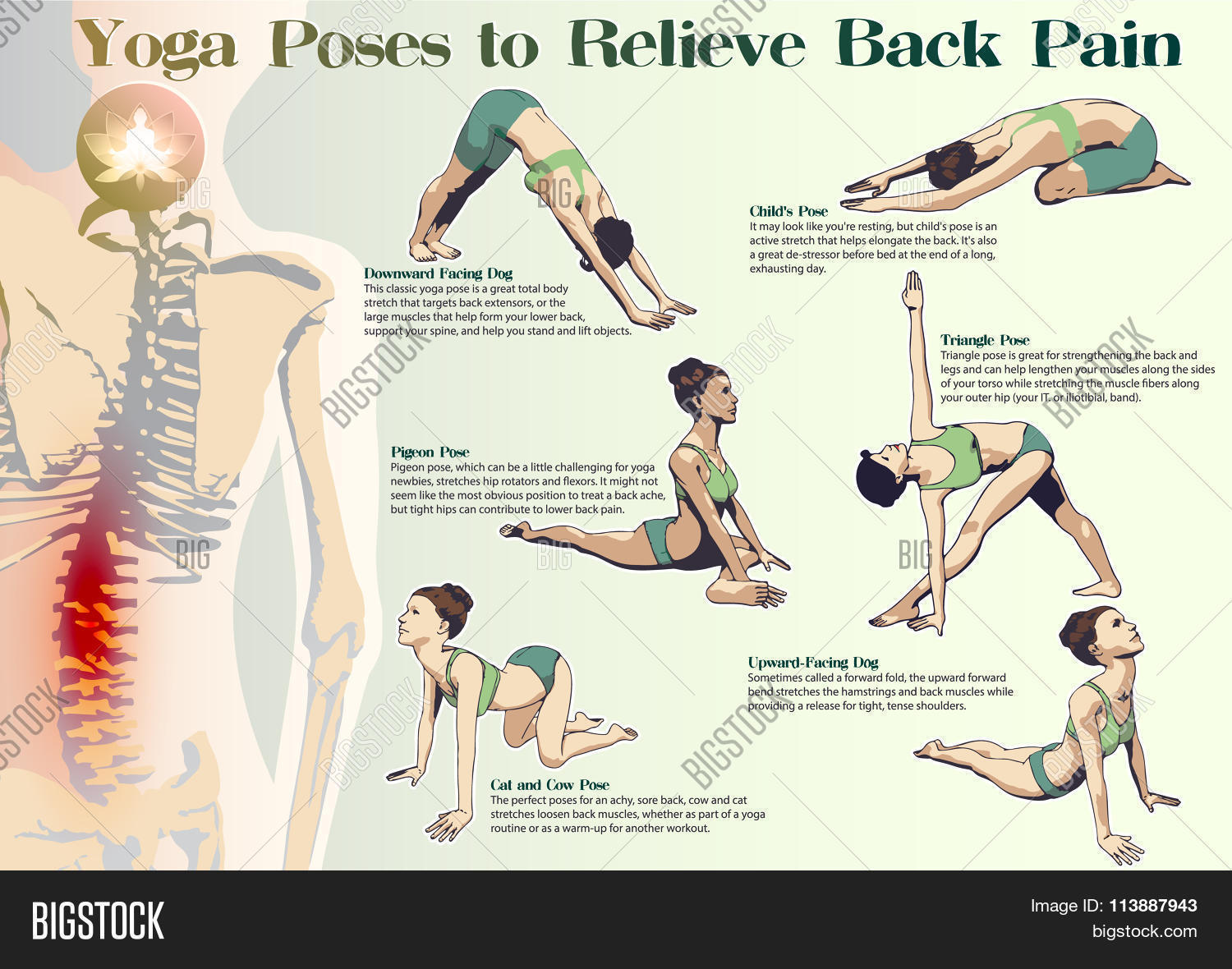Yoga Poses Relieve Vector & Photo (Free Trial)  Bigstock