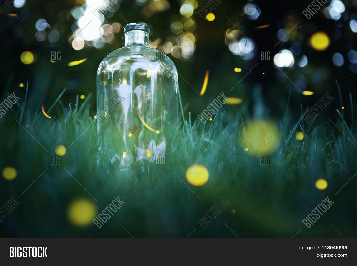 Fireflies Jar. Long Exposure Image  for Firefly Insect In Jar  66plt