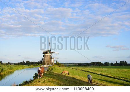 Three Horses, Three Windmills