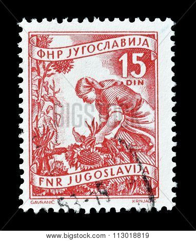 Yugoslavia 1952