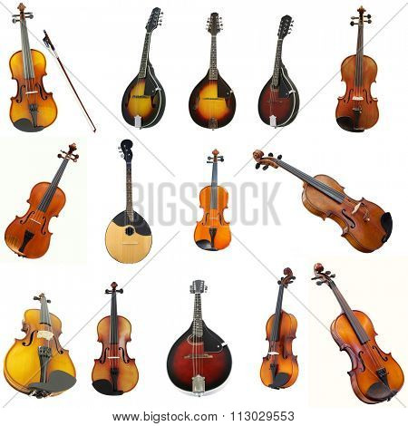 The image of violins and mandolins under the white background
