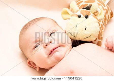 Crying 2 Months Baby With A Soft Toy