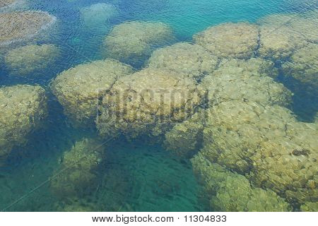 The coral seethrough from the boat to under the sea