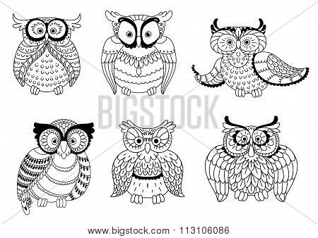 Decorative colorless owls and cute owlets