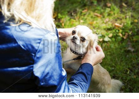 Woman praises her dog for good behaviour