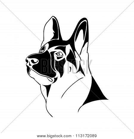 Portrait German Shepherd dog - black and white vector illustration