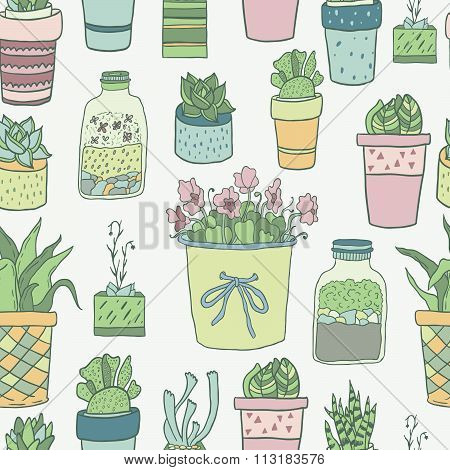aloe, art, background, blossom, botanical, botany, cacti, cactus, cartoon, collection, cute, decorat