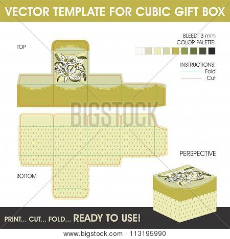 Vector Template For Cubic Gift Box