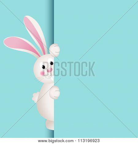 Bunny peeking out