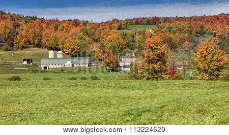 Beautiful generic dairy farm in Vermont, USA